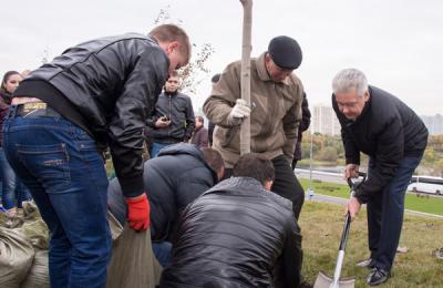 Сергей Собянин рассказал о программе озеленение в городе