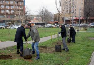 В Донском районе могут высадить новые кусратники и деревья