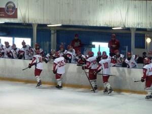 Хоккейный матч в ЮАО