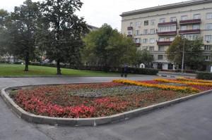 В Донском районе начали засаживать цветники