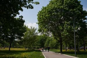 """Открытое первенство по спортивному ориентированию пройдет в парке """"Садовники"""""""