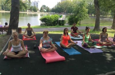 Занятие по йоге в Донском районе