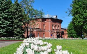 Один из корпусов больницы имени Алексеева в Донском районе