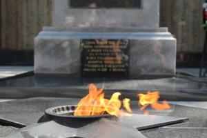 Вечный огонь в Донском районе