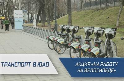 Всю рабочую неделю в Москве проходит акция «На работу на велосипеде»