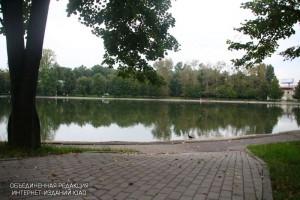 Парк в районе