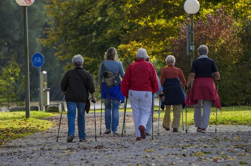 скандинавская ходьба, пенсионеры, долголеты, прогулка, осень, пиксибей, 2808