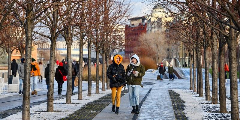 Парк Горького, День защитника Отечества, бесплатные экскурсии, история,