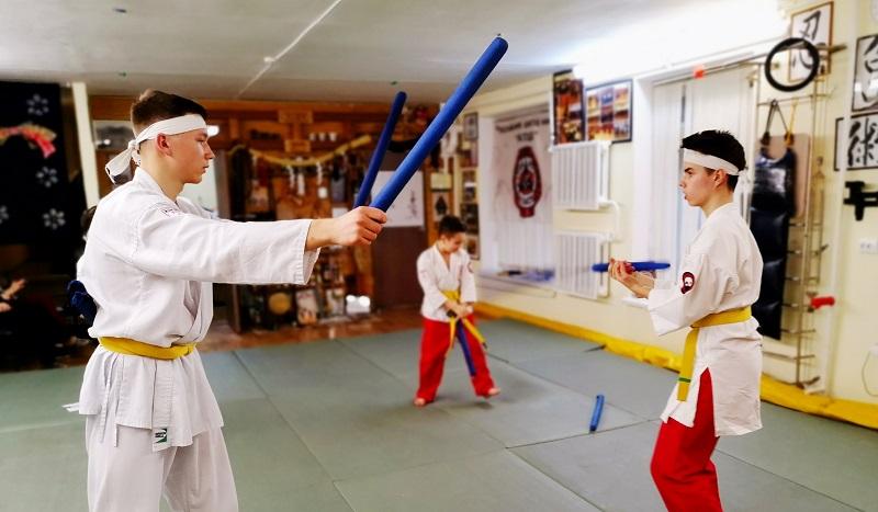 Российская школа ниндзя «Катэда Рю», нунчаки, семинар, боевые искусства, ниндзя