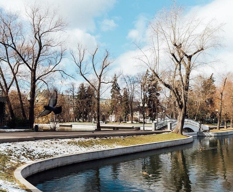 """Парк Горького, онлайн-экскурсии, лекции, виртуальная прогулка, Артем Голбин, """"Медиарубка"""""""