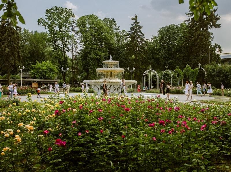 парк горького парк лето природа