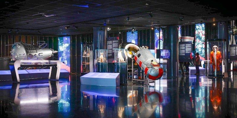 Ночь-в-музее мос ру