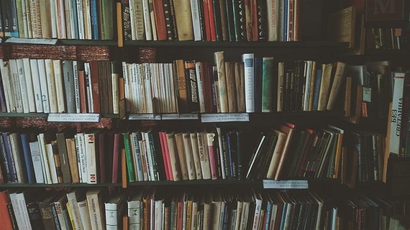 ДонНовость книги библиотека
