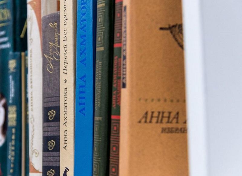 ДонНовость книги чтение литература