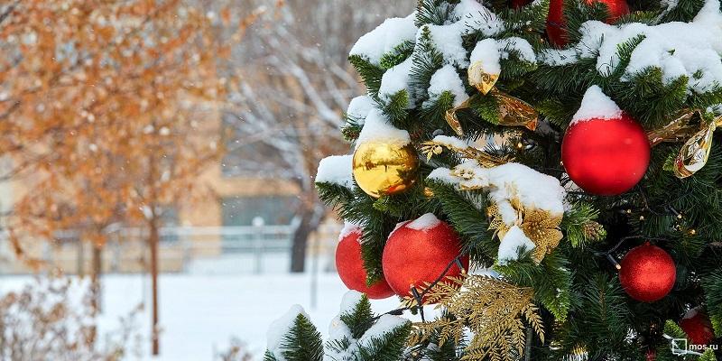 новогодняя-елка-снег-мос-ру